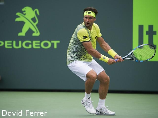 David Ferrer legend