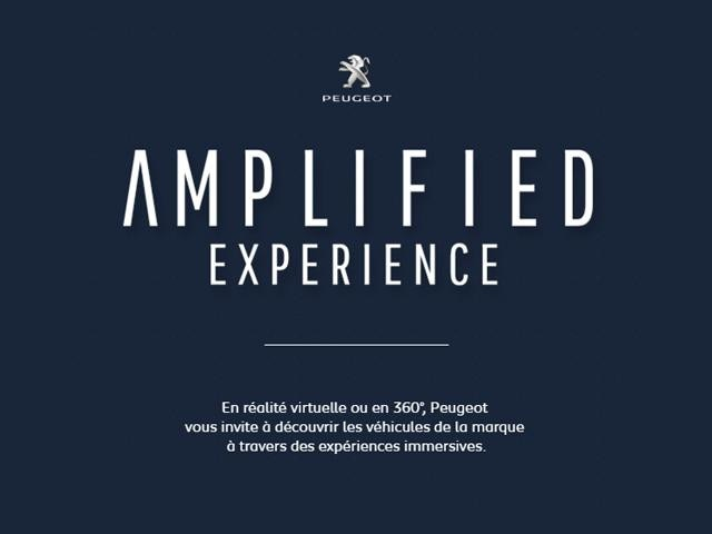 Amplified_FR