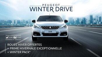 winterdrive-308_605x340-fr