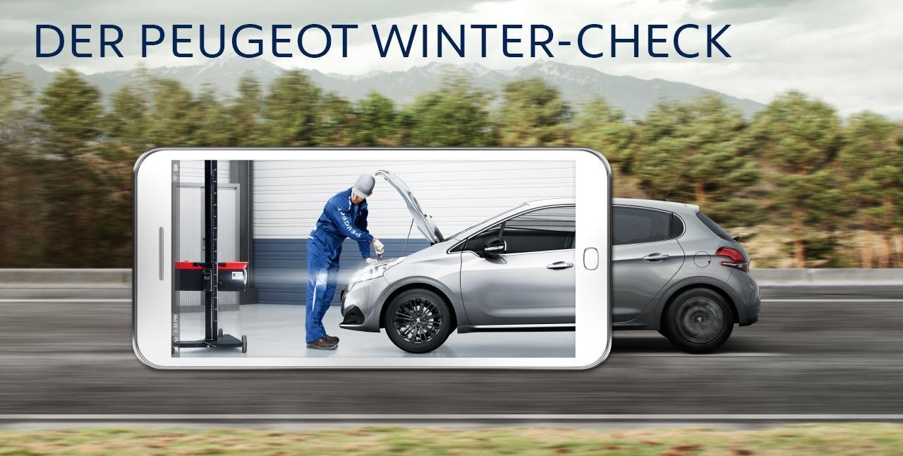 Check d'hiver Peugeot